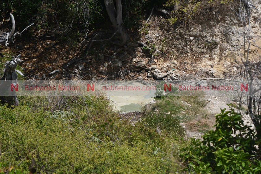 BWA says it is not at fault at River Bay