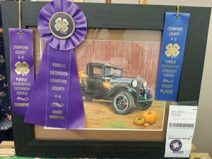 Talents on display at 4-H Showcase