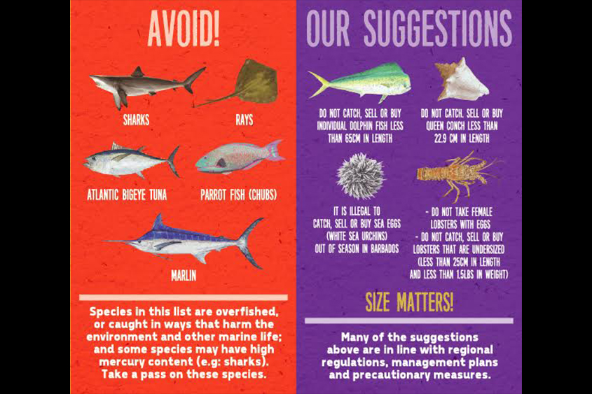 seafood-options-1