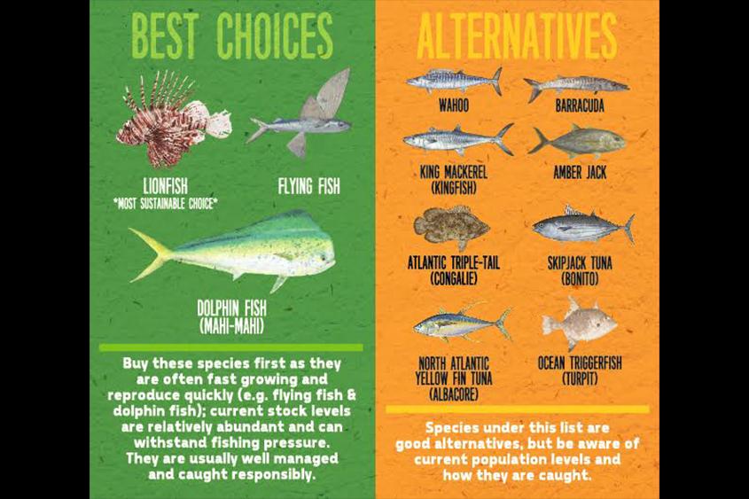 seafood-options-2